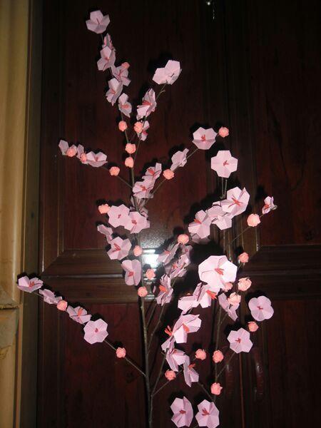 Easy Origami Cherry Blossom Folding Instructions   600x450