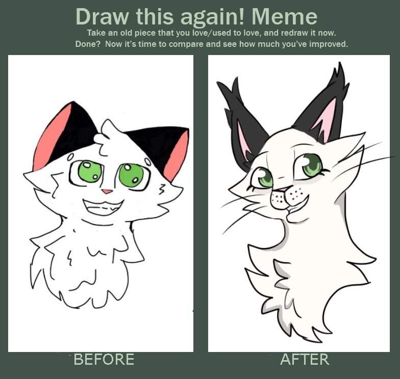 Draw It Again Meme Warriors Fursona S Oc S Amino