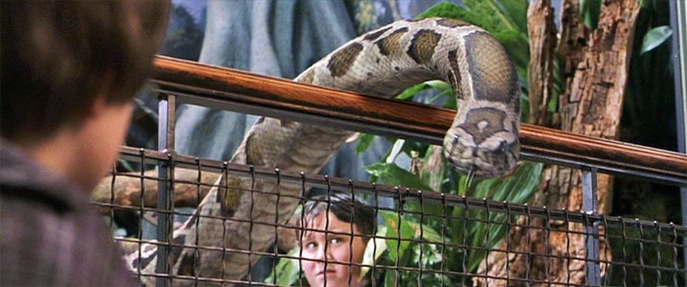 Is Nagini the Snake Harry Set Free at the Zoo?   Harry