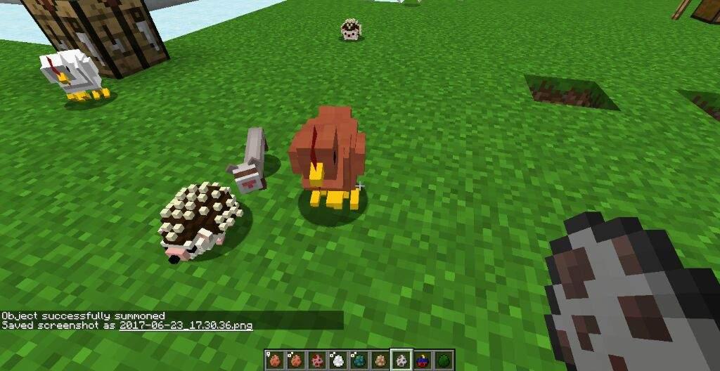 Ferret | Wiki | Minecraft Amino