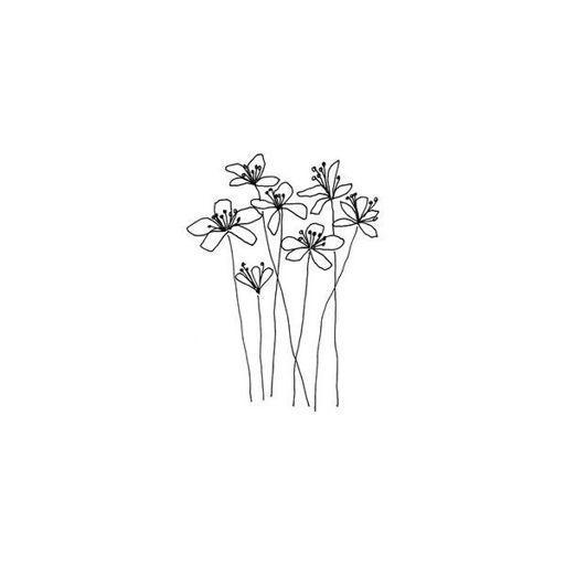 Flower Drawing App: [ Wallpapers Tumblr ]