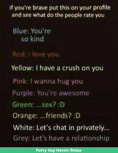 furry chat gay
