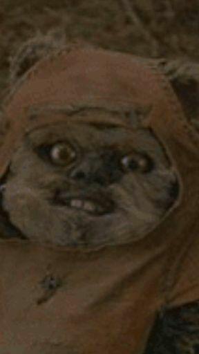Ewoks Are Creepy Star Wars Amino