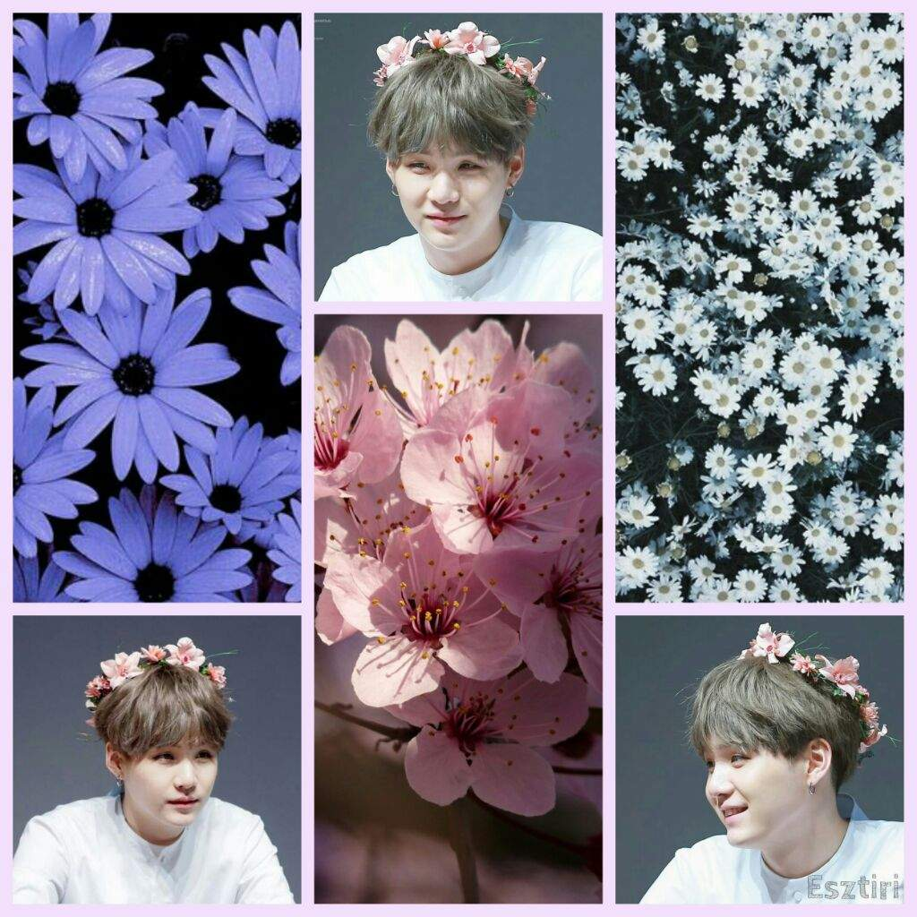 Bts Hyung Line Flower Crown Bts Aesthetics Amino