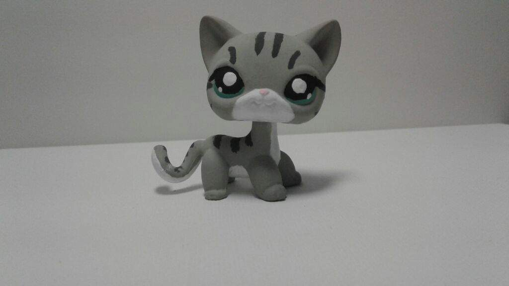 Lps Shorthair Cat Custom Abycamp
