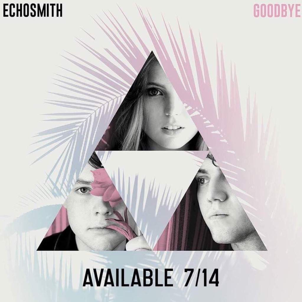 Goodbye cover art meaning echosmith fans amino if you notice sydney noah and grahams pictures form a triangle with space for a fourth triangle in the middle i think this symbolizes the missing biocorpaavc Gallery