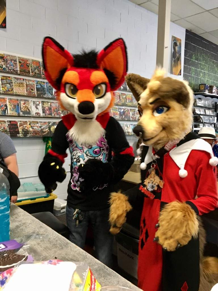 The Fox And The Hound  Furry Amino-3703