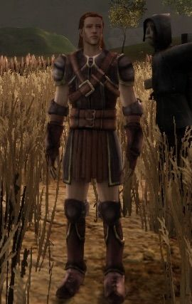 Light Armor Sets Dao Wiki Dragon Age World Amino Silver dragon armor turkish translation. light armor sets dao wiki dragon