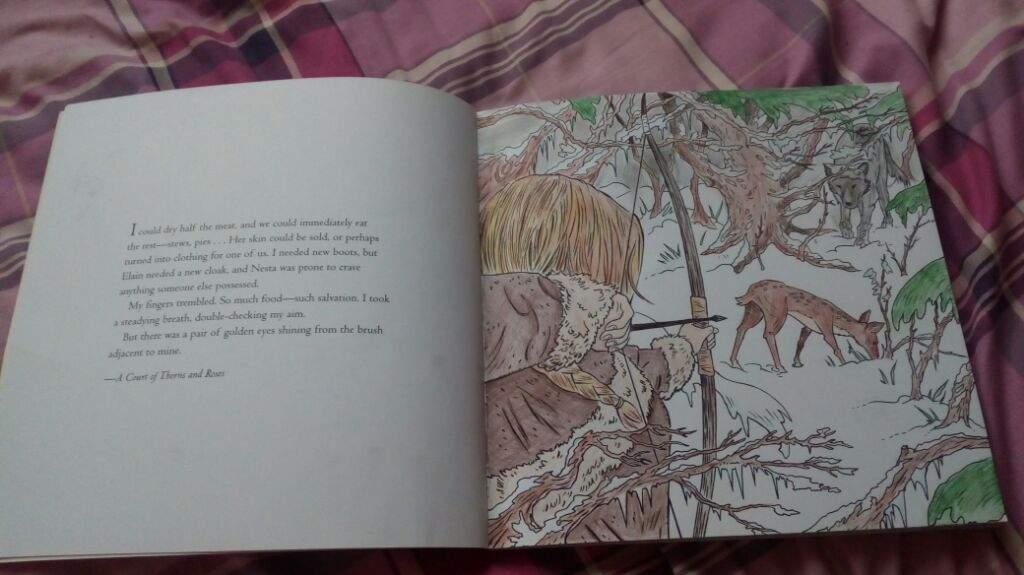 Acotar Colouring Book Hunting Sarah J Maas Amino