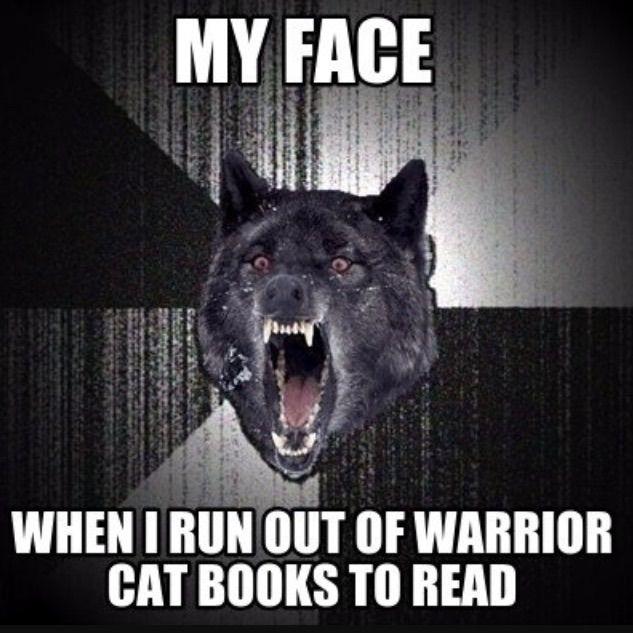 Warrior Cat Memes 2 Warriors Amino