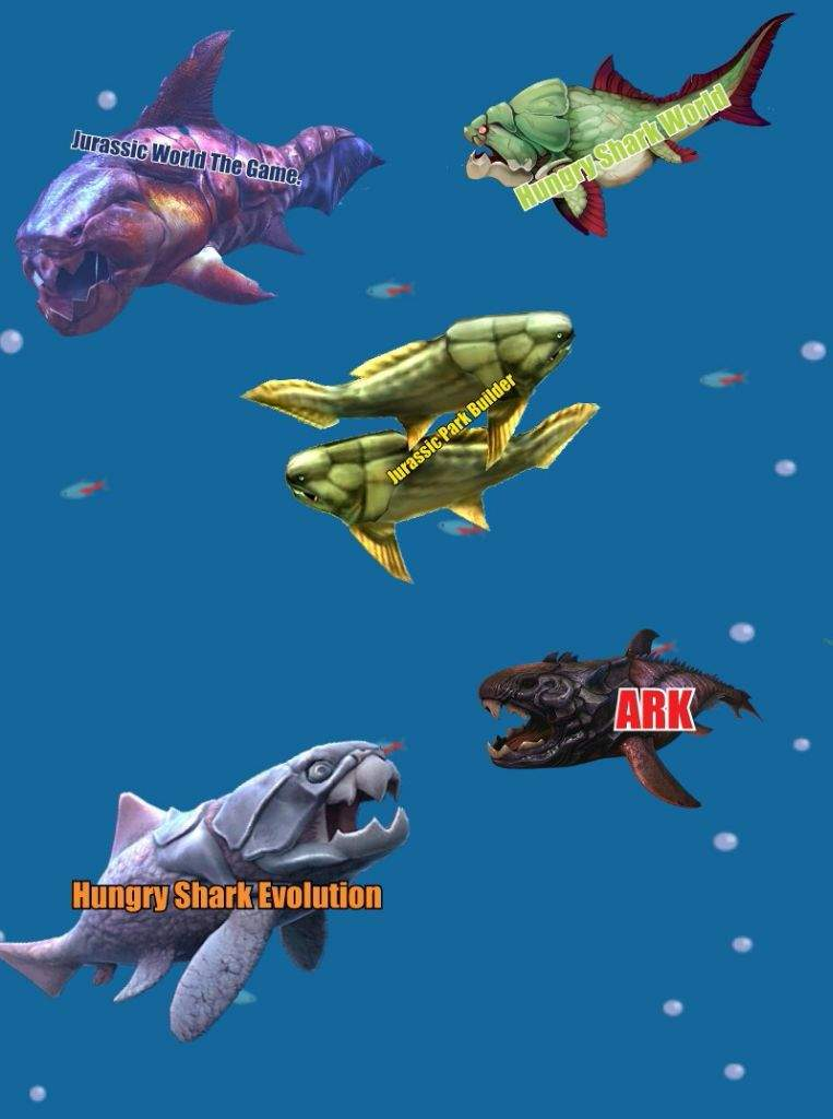 Dunkleosteus  | Amino Paleontología Amino