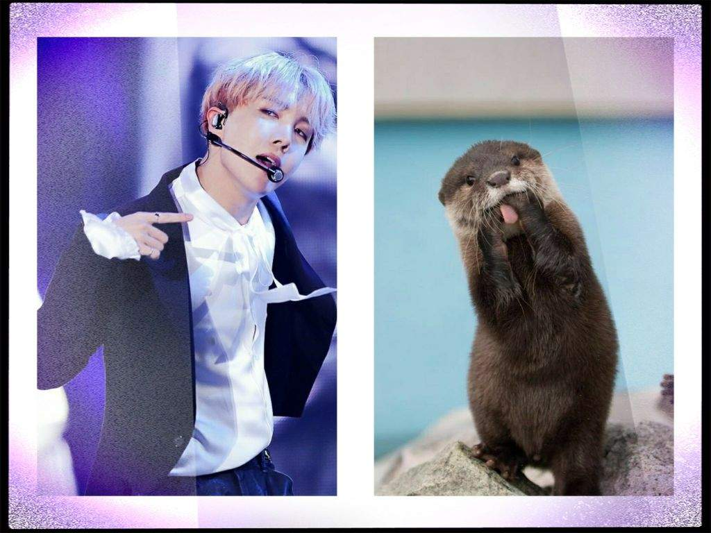 Vhope native american animal symbols vhope amino otter january 20 february 18 buycottarizona