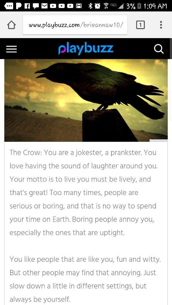 My Spirit Animal The Crow Life Is Strange Amino