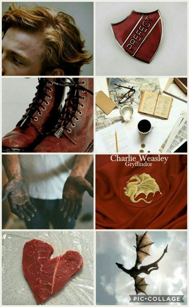 Charlie Weasley Aesthetic Harry Potter Amino
