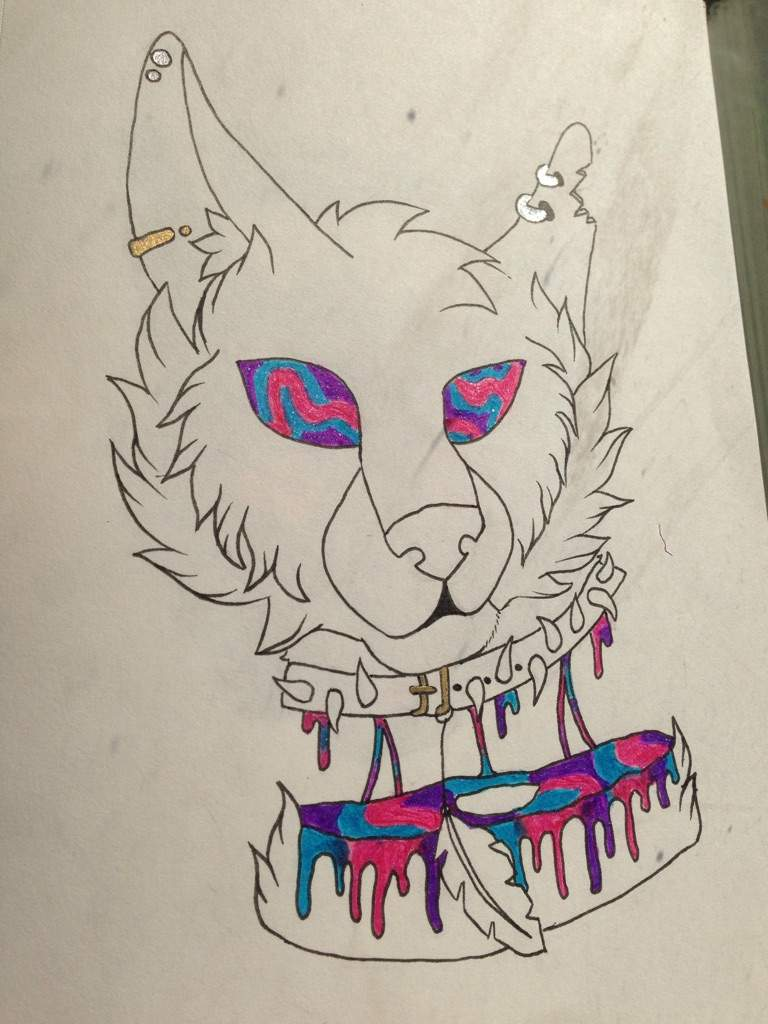 Candy Gore Cat Warriors Amino Image uploaded by cat kit. amino apps