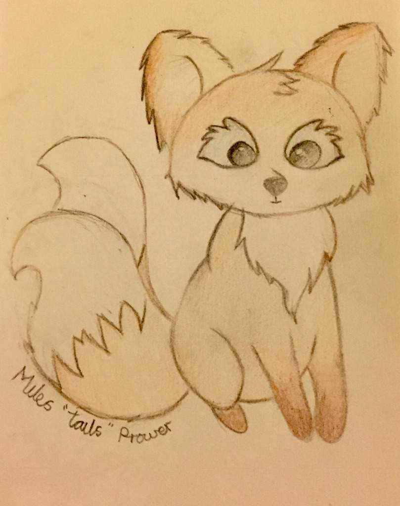 Realistic Sonic Characters Tails Sonic The Hedgehog Amino