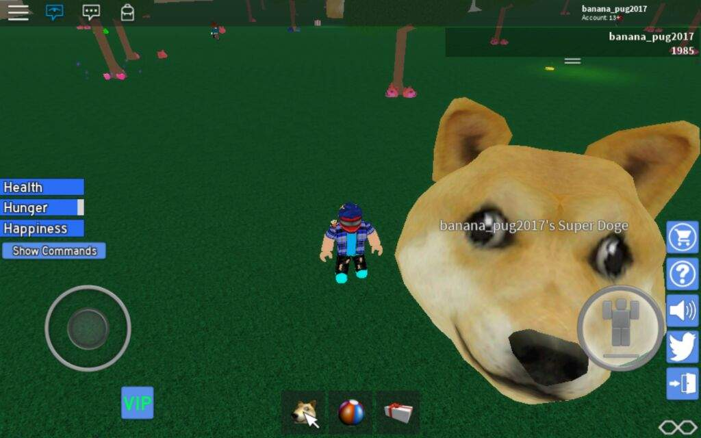 Me and my super doge | Roblox Amino