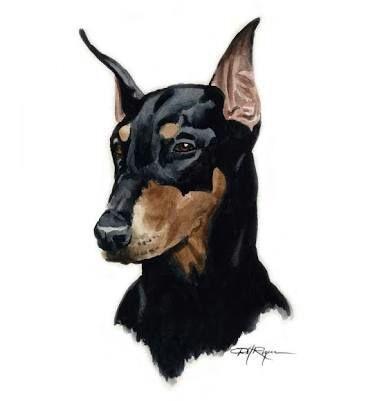 Desenhos Realistas Cachorrinhos Pt Br Amino