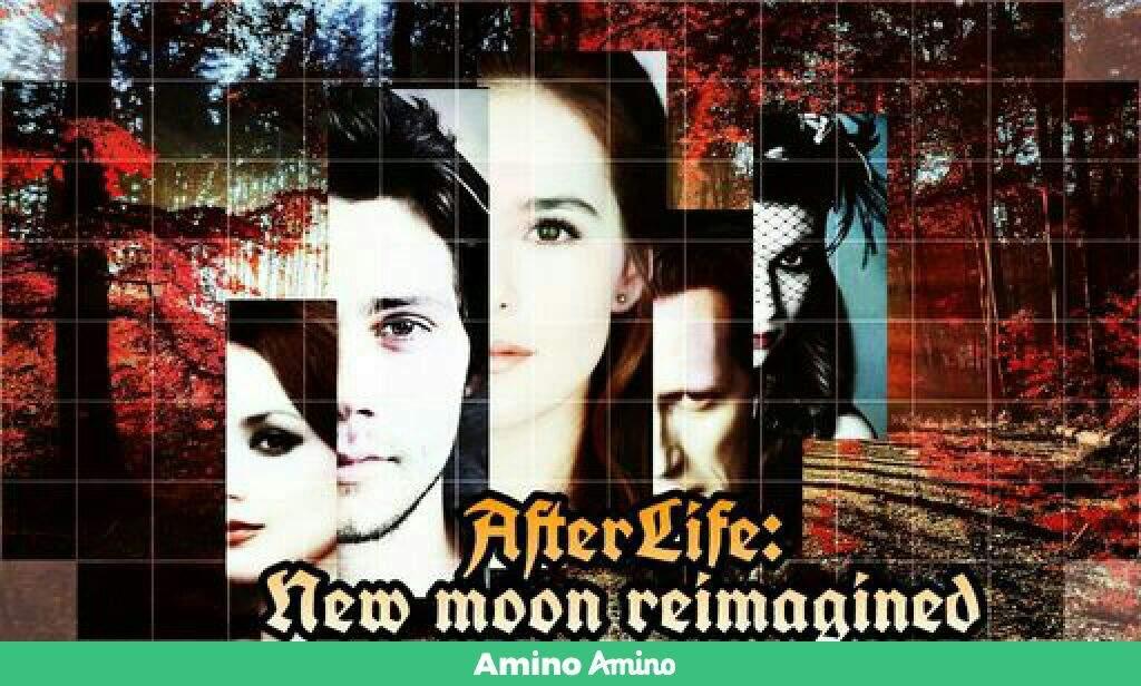 the twilight saga 2 new moon