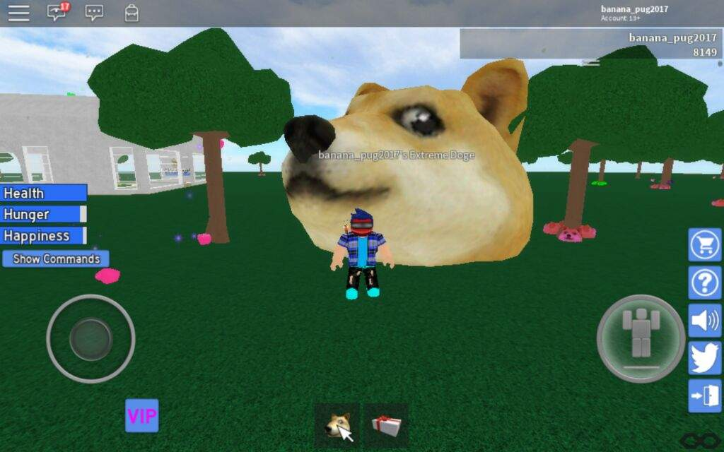 ME HAVE EXTREME DOGE NOW | Roblox Amino