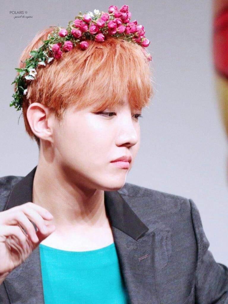 Hobi Flower Crown Challenge Jung Hoseok J Hope Amino