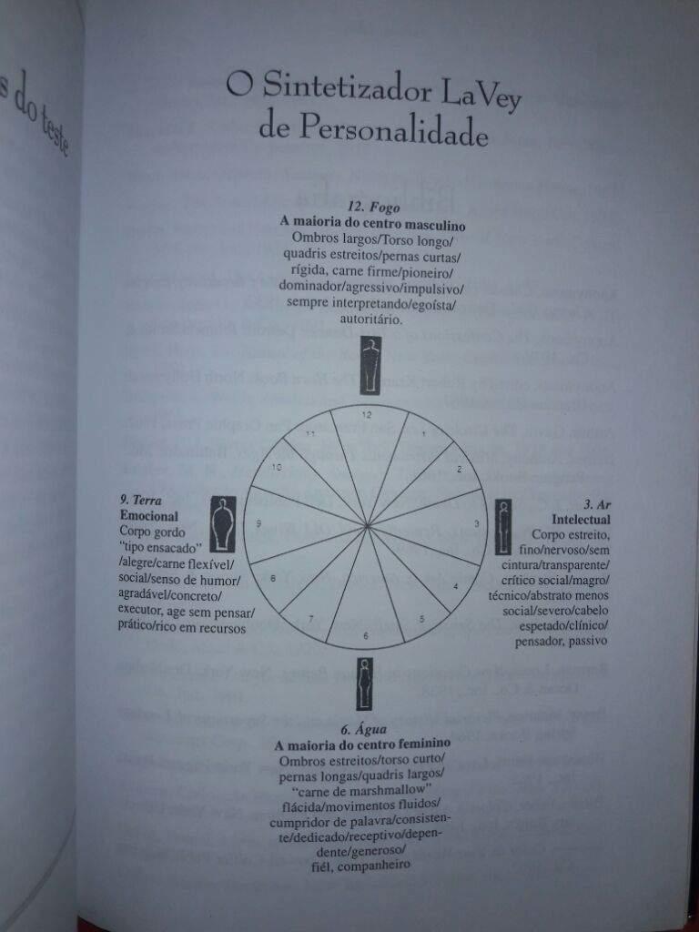 livro a bruxa satanica