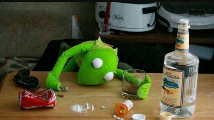 alcoholic kermit | Kermit addicts AminoKermit Drinking Wine