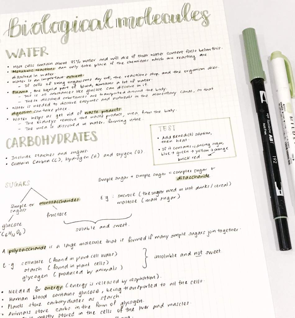 New Biology Syllabus Notes