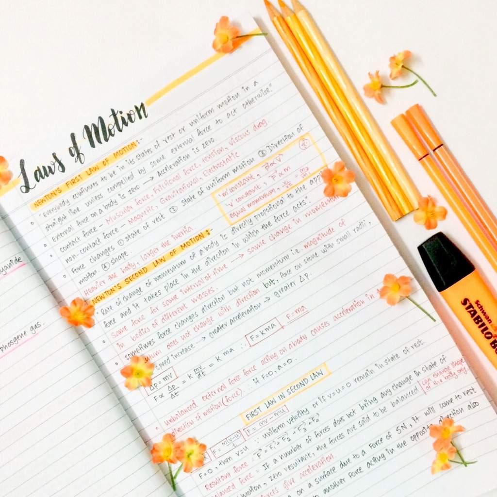 📙Physics Study Notes ✨🍊   Studying Amino Amino