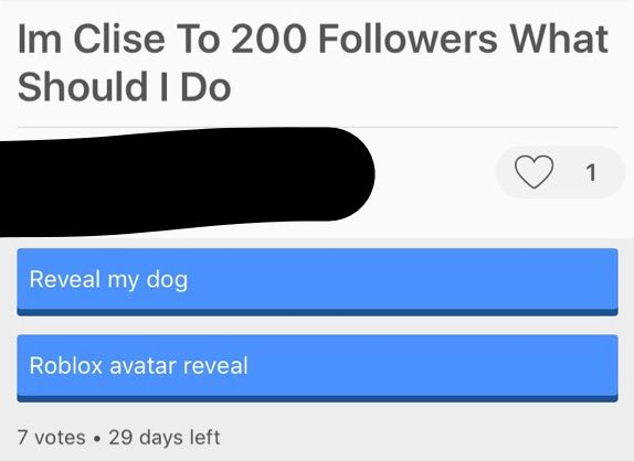 Spam Questions And Polls | Roblox Amino