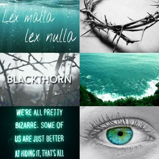 Blackthorn Moodboard Family Moodboard Challenge Part 2