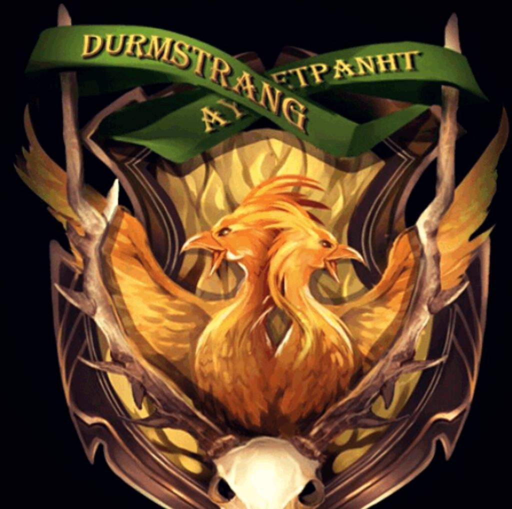 Durmstrang Institute Amino It is true that durmstrang, which has turned out many truly great witches and wizards, has twice in its history fallen under the stewardship of wizards. durmstrang institute amino