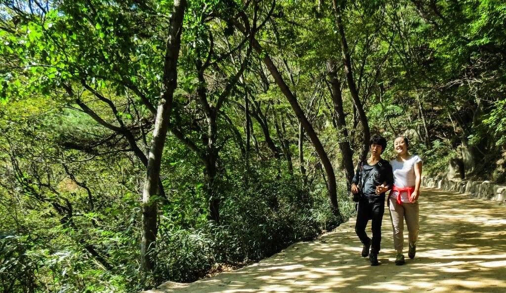 Картинки по запросу green day in korea