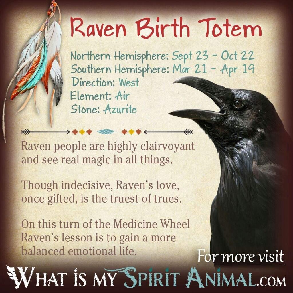 Familiars/Spirit Animals- Raven   Pagans & Witches Amino
