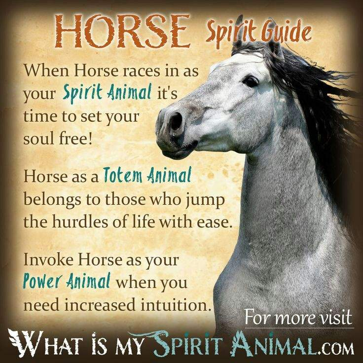 Familiarsspirit Animals Horses Pagans Witches Amino