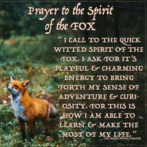 Familiar/Spirit Animals- Fox   Pagans & Witches Amino