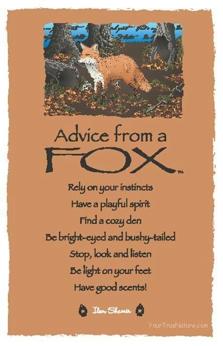 Familiar/Spirit Animals- Fox | Pagans & Witches Amino