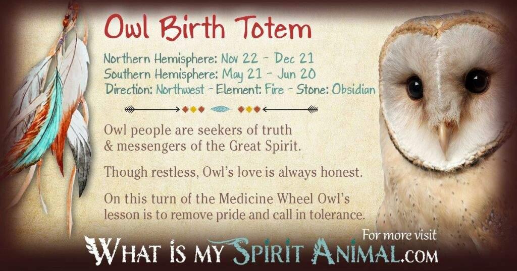 Familiars/Spirit Animals- Owl   Pagans & Witches Amino
