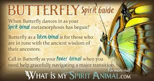 Familiars/Spirit Animals- Butterfly | Pagans & Witches Amino