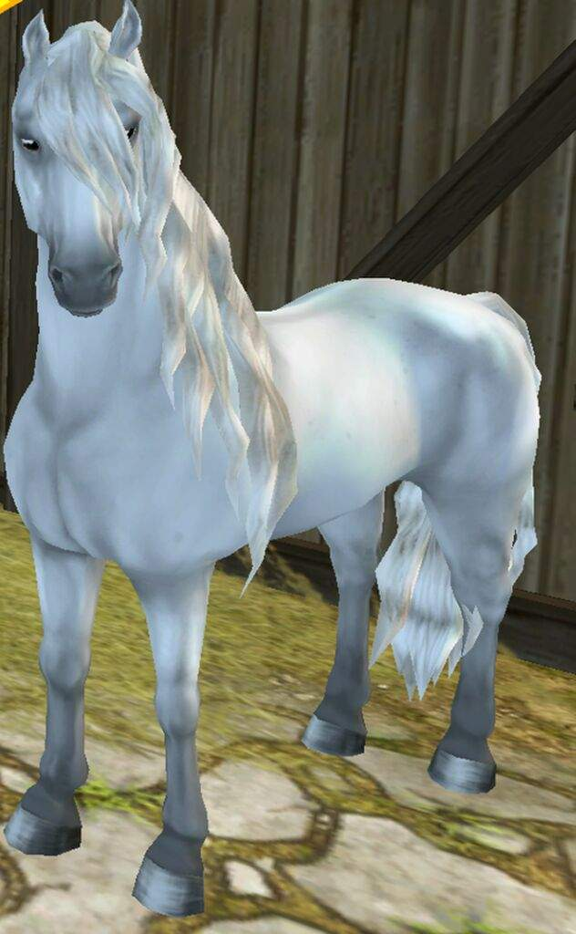star stable how to get your horses back after hacked