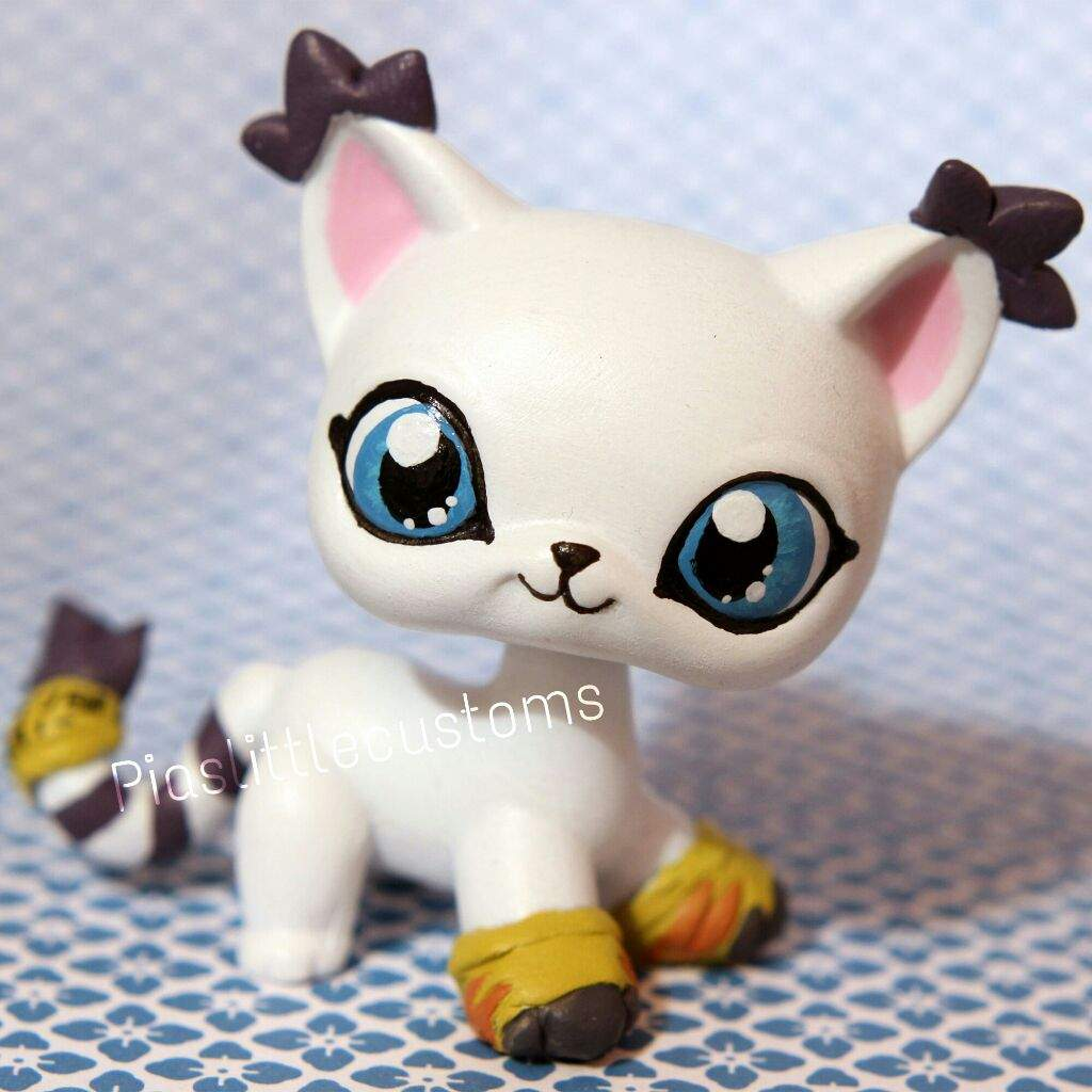 All My Shorthair Cat Customs Lps Amino