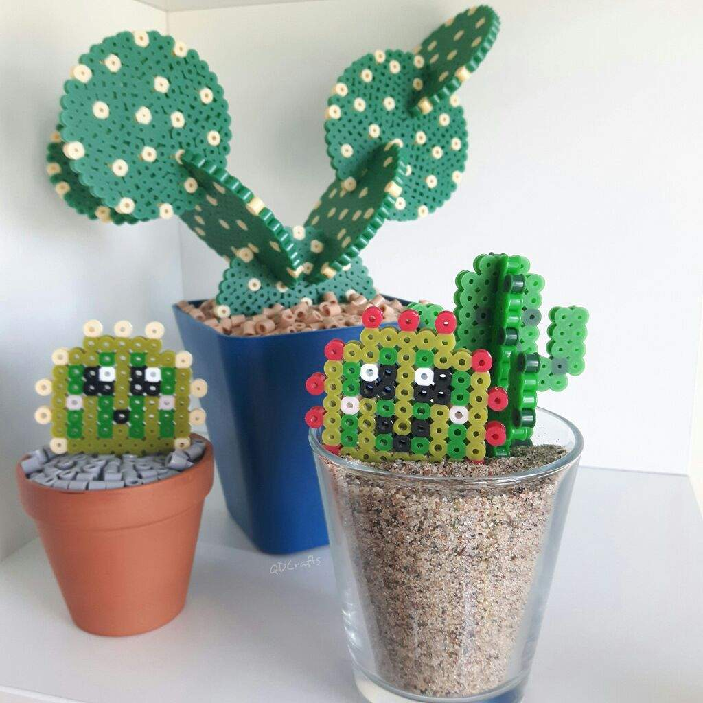 Diy Fuse Bead Cactus Pots And Coasters Crafty Amino