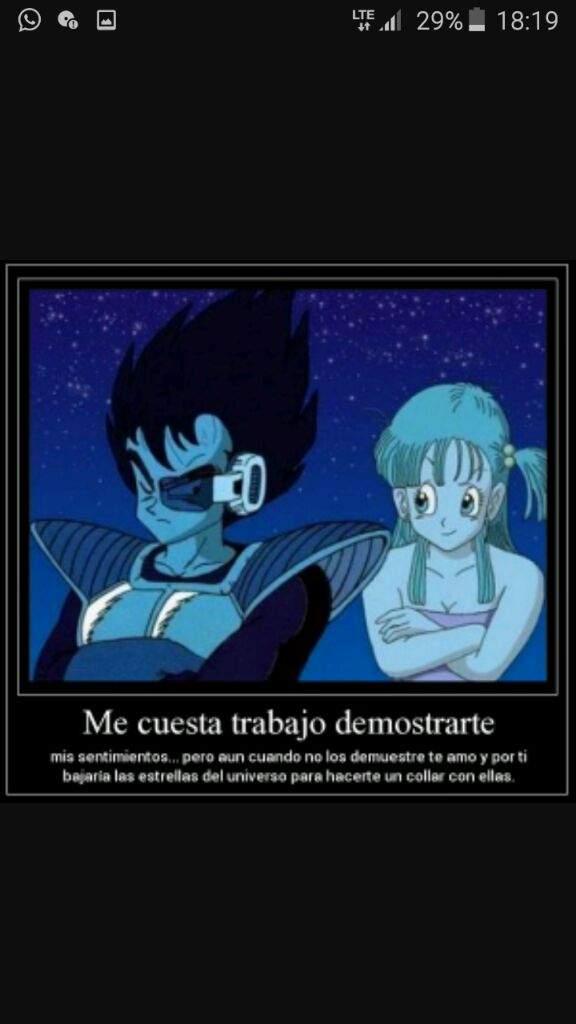 Bulma Y Vegeta Un Amor Verdadero Dragon Ball Espanol Amino