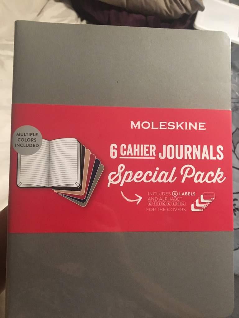 Moleskine Keepers For Beginner Bullet Journal Amino