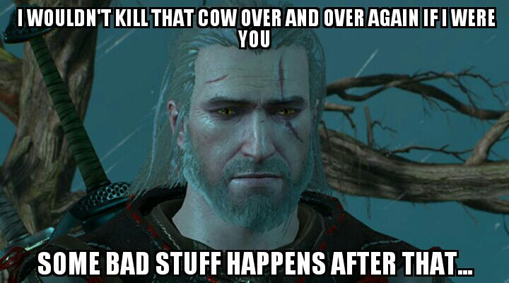 Some The Witcher 3 Memes I Made D Memes Amino