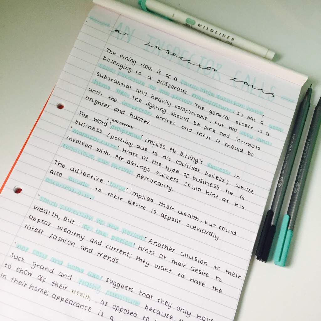 Study Notes-English | Studying Amino Amino