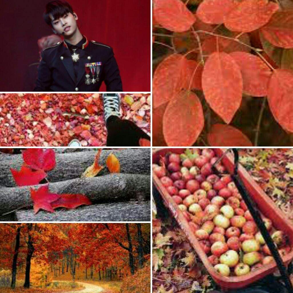 Fall Vixx Aesthetics Collaboration!! (N, Leo, Ravi) | VIXX Amino Amino