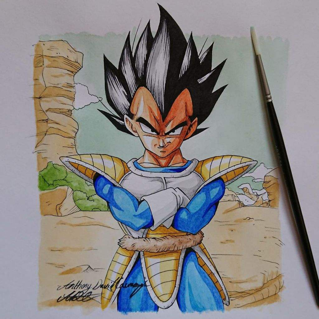 Vegeta Illustration Watercolour Akira Toriyama Style Dragonballz Amino