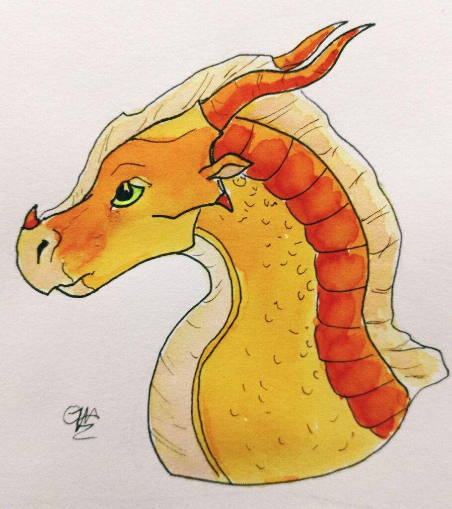 Hybrid Adoptables!!! (CLOSED) | Wings Of Fire Amino