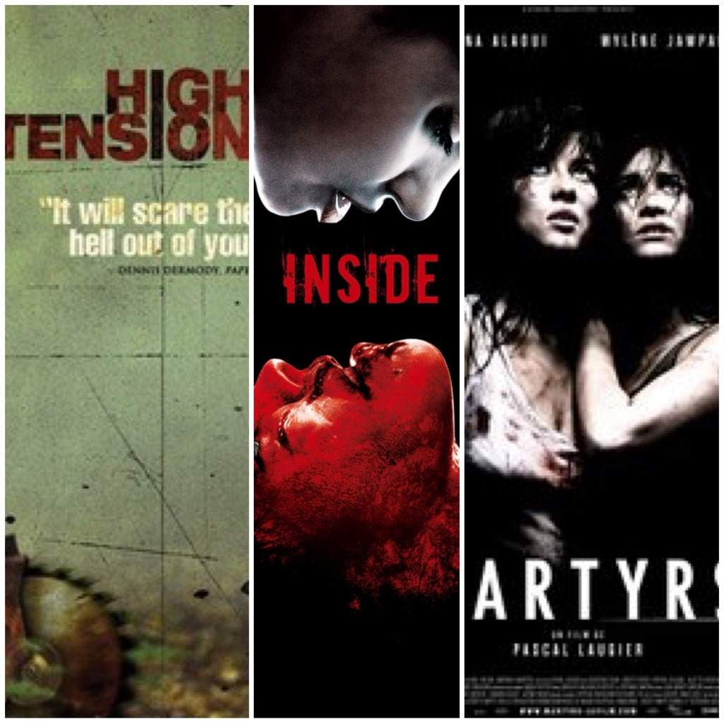All you need to know about martyrs horror amino for Inside french horror movie